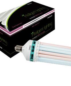CFL 6400k Lamp
